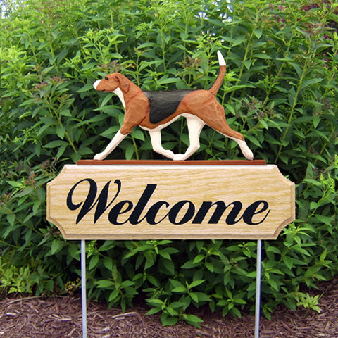 English Foxhound DIG Welcome Stake