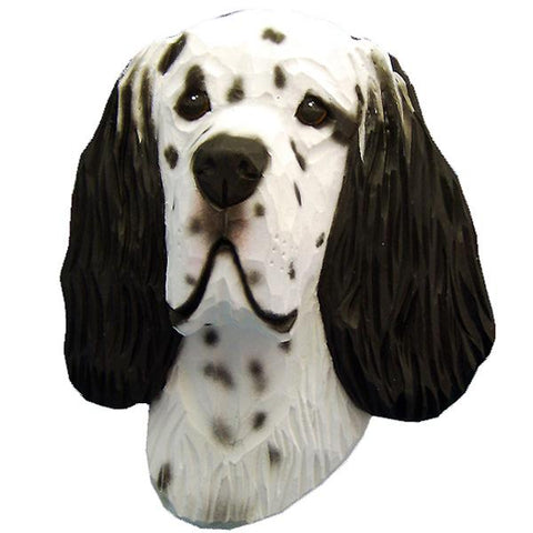 English Setter Small Head Study