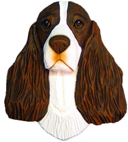 English Springer Spaniel Small Head Study