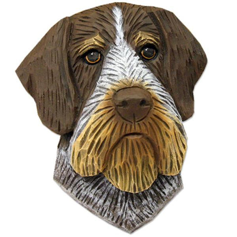 German Wirehair Pointer Small Head Study