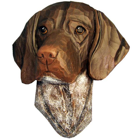 German Shorthaired Pointer Small Head Study