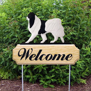 Japanese Chin DIG Welcome Stake
