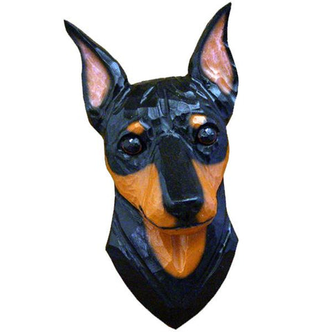 Miniature Pinscher Small Head Study