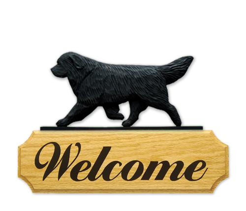 Newfoundland DIG Welcome Sign