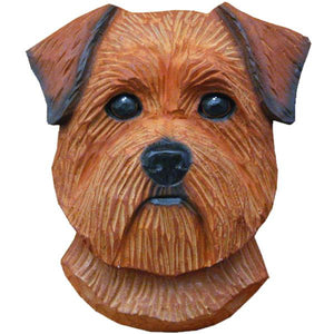 Norfolk Terrier Small Head Study
