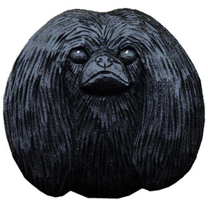 Pekingese Small Head Study