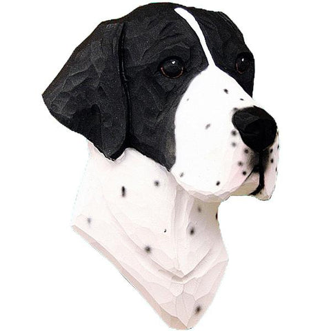 English Pointer Small Head Study