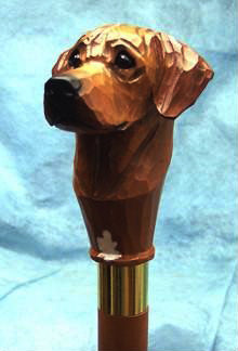Rhodesian Ridgeback Walking Stick