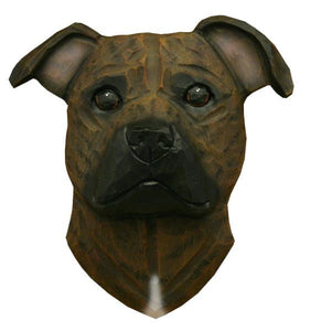 Staffordshire Bull Terrier Small Head Study
