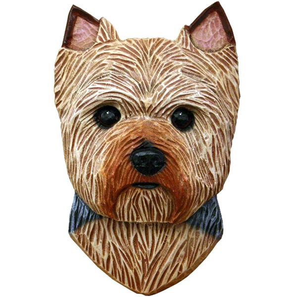 Yorkshire Terrier (Puppy Clip) Small Head Study