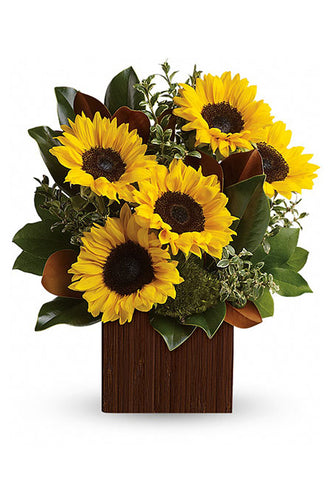 Bouquet of Sunflowers arranged in a nice vase