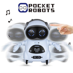 Mini Pocket Robot