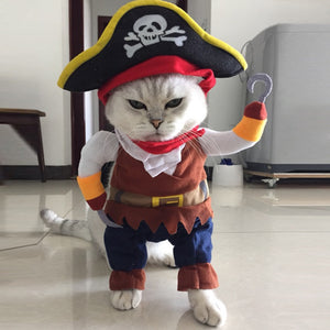 Pirate Pet Costume - Cats & Small Dogs