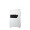 S6370 - Combination Business Fire Safe