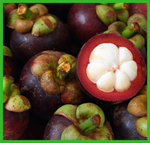 Mangosteen Delivery