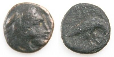 381-369 BC Macedonian Kingdom AE16 Coin (VF) Amyntas III Eagle & Serpent S-1453a