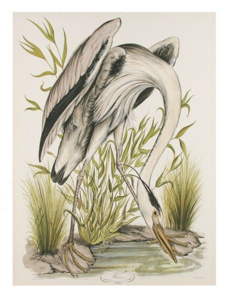 """Heron"" by Jerome Trolliet Lithograph on Paper Penn Prints 1974 26"" x 20"""