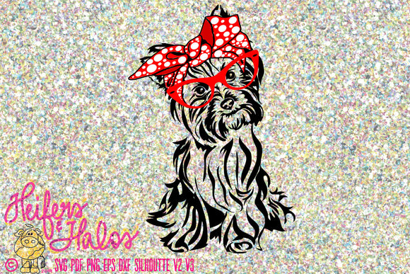 Bandana Yorkie digital file, digital cut file, printable, sublimation, cricut, silhouette, svg, pdf, png, eps, dxf, yorkshire terrier - Heifers and Halos Graphics