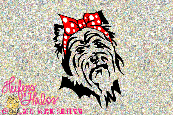 Bandana yorkie dog digital file, digital cut file, printable, sublimation, svg, pdf, png, eps, dxf, silhouette, cricut, t-shirt design - Heifers and Halos Graphics