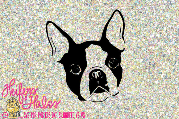 Boston Terrier SVG file png, pdf, eps, dxf, silhouette, cricut - Heifers and Halos Graphics