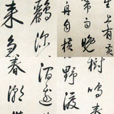 GA100 100% HAND PAINTED CALLIGRAPHY CHINESE TRADITIONAL INK SCROLL PAINTING