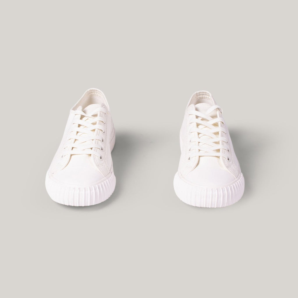 PF FLYERS CENTER Lo - SEA SALT