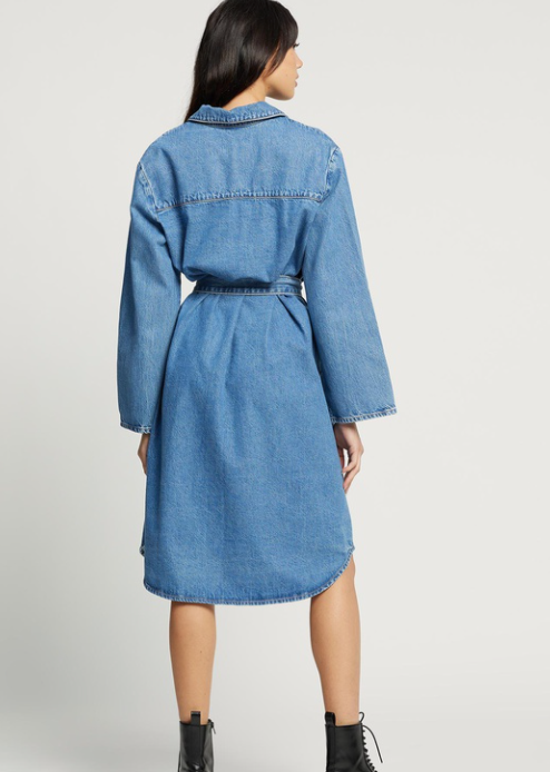 Elysian Collective Nobody Denim Day Shirt Dress