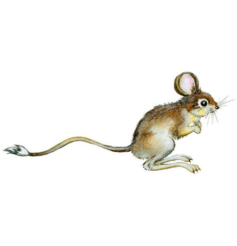 Mouse Wall Sticker