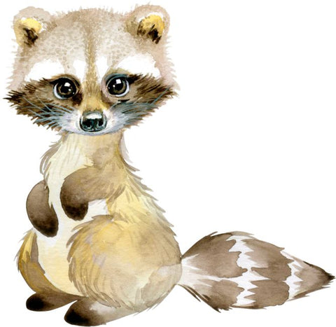 Baby Racoon Wall Sticker