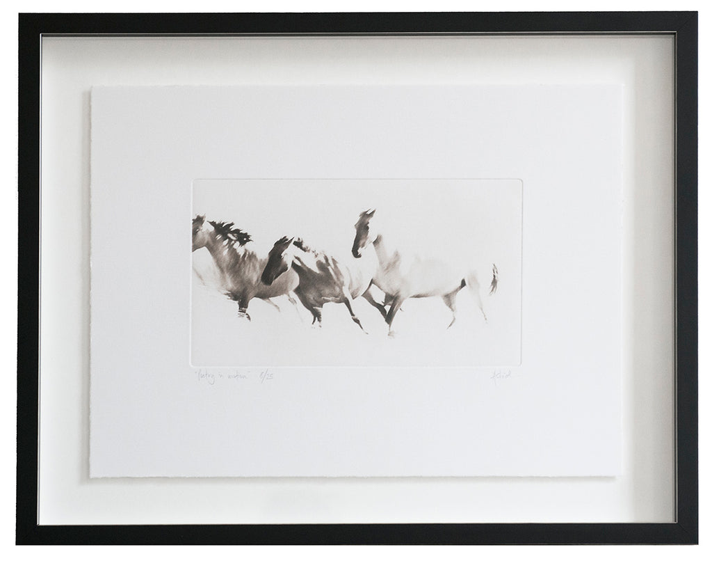 Poetry In Motion :: Photogravure Etching