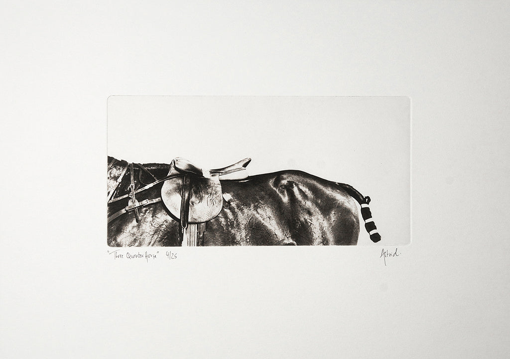 Three Quarter Horse :: Photogravure Etching