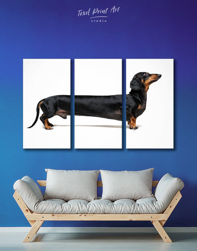 3 Piece Long Dachshund Wall Art Canvas Print - 3 Panels Animal Animals bedroom Contemporary