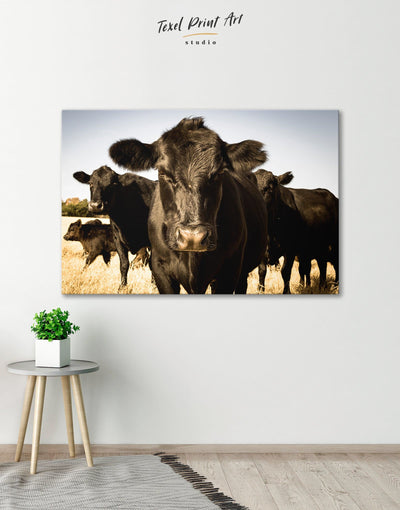 Cows Wall Art Canvas Print - 1 panel Animal Animals Black cow canvas wall art