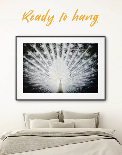 Framed Albino Peafowl Wall Art Print - Abstract bedroom framed print framed wall art Living Room