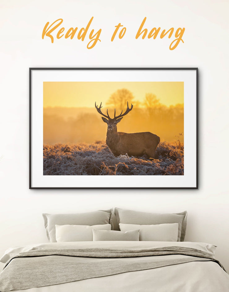 Framed Deer Animal Wall Art Print - Animal bedroom deer wall art framed print Living Room