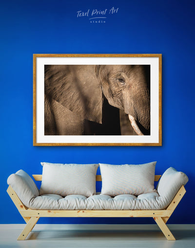 Framed Elephant Wall Art Print - Animal Animals bedroom elephant wall art framed print