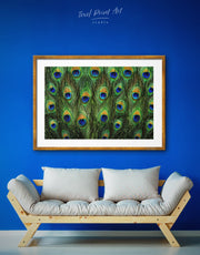 Framed Peacock Feathers Wall Art Print