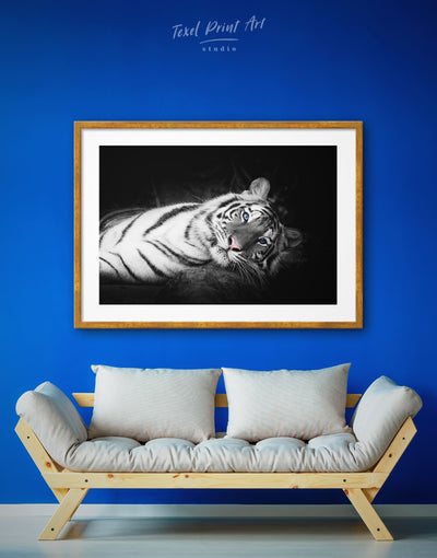 Framed White Tiger Wall Art Print - Animal Animals bedroom black framed print