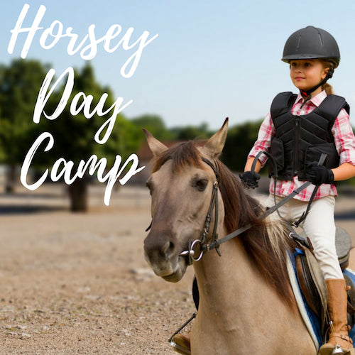 Horsey Day Camp Progressive - RESERVED ONLY