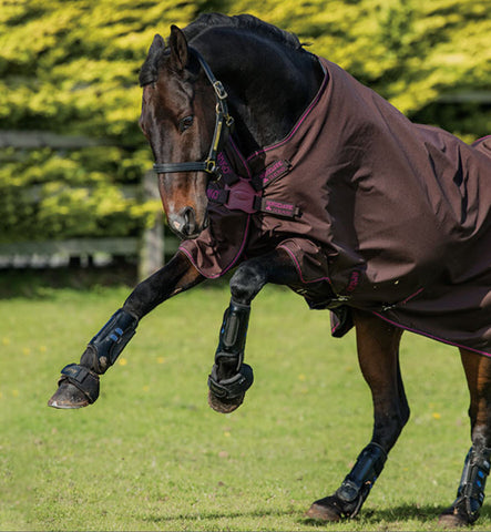 Horseware Ireland Amigo® Hero Disc Front Turnout Medium Lite