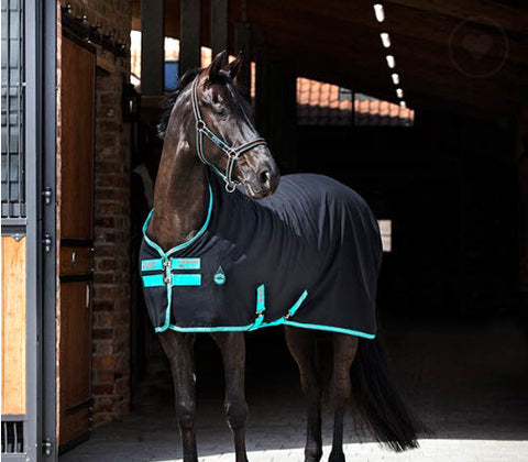 Horseware® Ireland Amigo® Stable Sheet