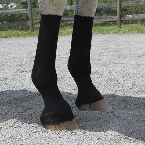 EquiFit™ HorseSox Individual Pack