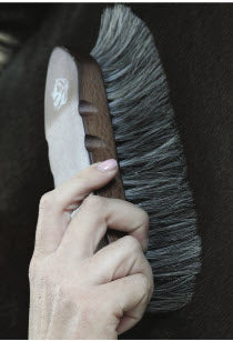 Pro Choice Tail Tamer Soft Touch Wood Handle Horse Hair Brush