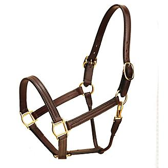Tory Leather Pro KY Track Halter