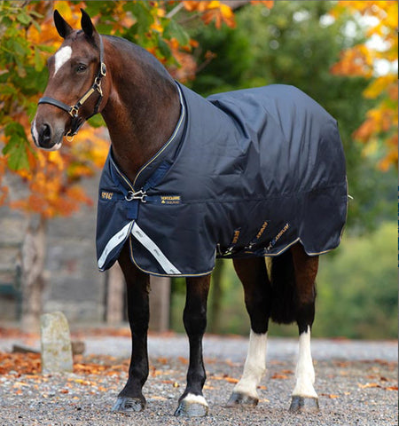 Horseware® Ireland Amigo Bravo 12 XL Standard Neck Turnout -Medium (250g)