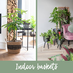 Indoor baskets