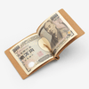 Money Clip - livealifehome