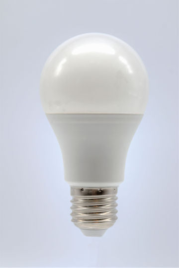 5 Watt DC LED Light Bulb