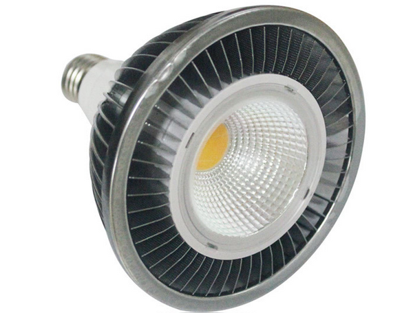 20 Watt DC LED Spot Lamp