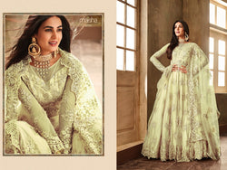 Heavy Net with Embroidery work Pista Colour Gown